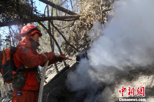 """四川雅江""""2.16""""森林火灾仍在扑救 无人员伤亡"""