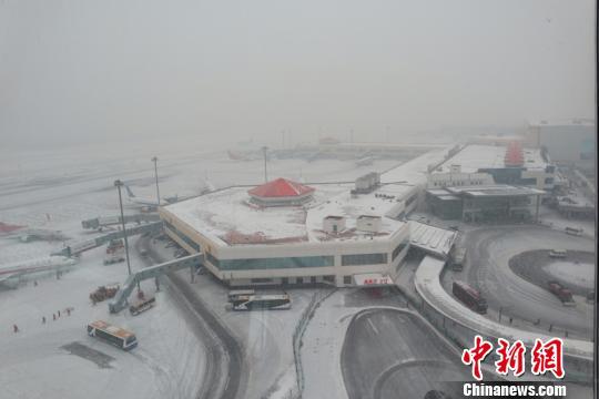 3日,大雪再次来袭黑龙江,哈尔滨太平国际机场80余航班受影响。 王雄非 摄
