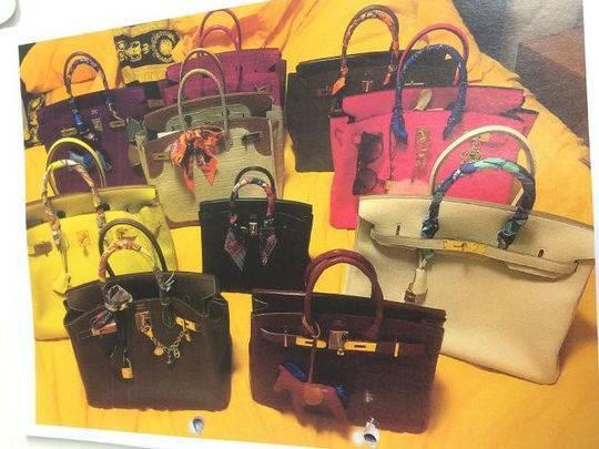 李佳欣購買的奢侈品手袋。