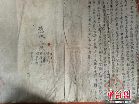 近日,江西新干县档案馆工作人员在清理民国档案时,发现一份盖有官印的土地买卖文契。 郑剑平 摄