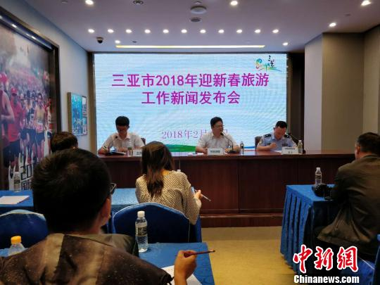 三亚市13日举行2018迎新春旅游工作新闻发布会 王晓斌 摄