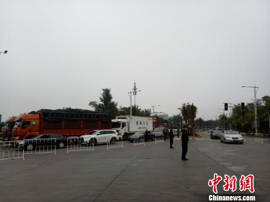2月22日,海口新海港,仍有大批车辆排队等待过海。 尹海明 摄
