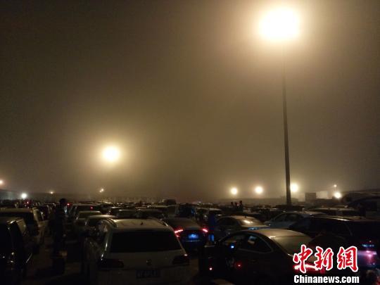 2月24日24时许,海口秀英港,大批车辆在港内待渡。 尹海明 摄