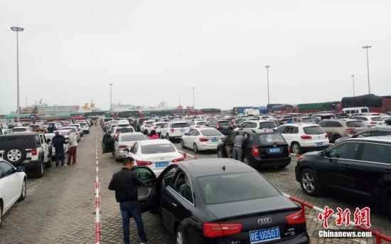 2月23日,海南海口新海港内,大批车辆待渡。 中新社记者 尹海明 摄