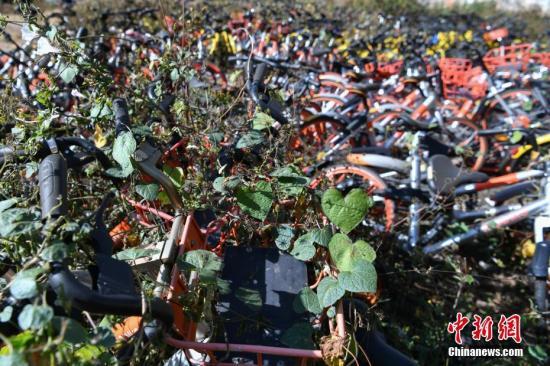 共享单车押金之谜:为何收押金、为何不托管