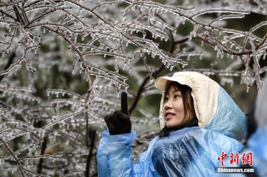 资料图:1月8日,受强冷空气影响,广东粤北地区出现雨夹雪天气,迎来2018年广东第一场雪。中新社记者 陈骥�F 摄