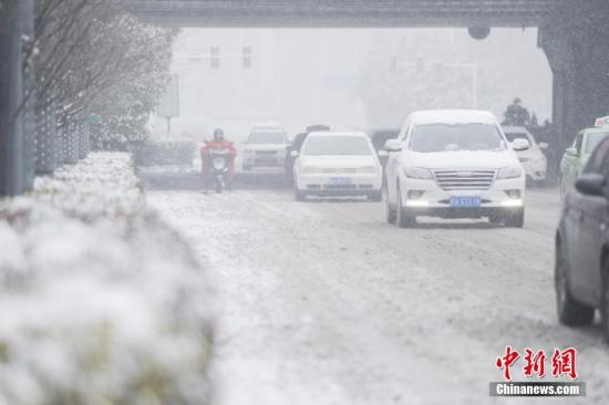 1月25日,安徽合肥降下大雪。张娅子 摄