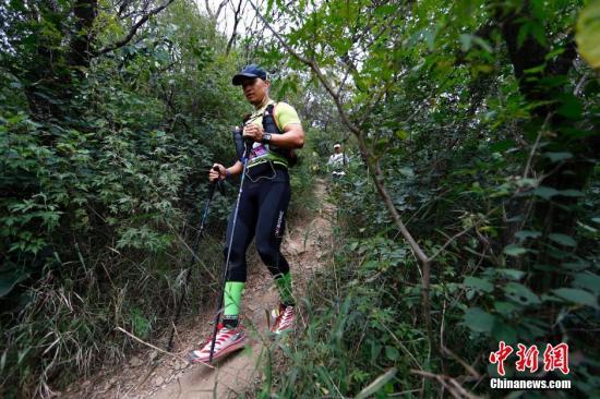 资料图:北京西山国家森林公园中的长跑及越野跑爱好者。中新社发 富田 摄