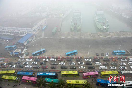2月19日,滞留车辆在海口秀英港码头排起长龙。 中新网 图
