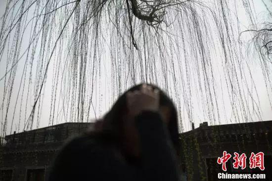 资料图。中新社记者 刘关关 摄