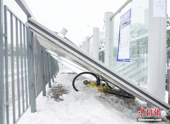 1月4日,安徽合肥望江路卫岗公交站台被雪压服。 中新社记者 张娅子 摄