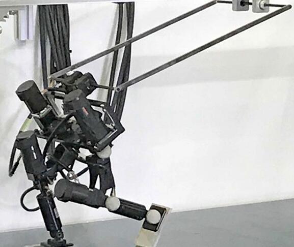 这个机器人不但能跑,速度还挺快|机器人|行走|姿势_新浪