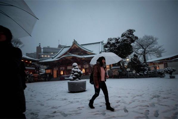 22日,日本东京23区出现大规模降雪。(图片来源:台媒)