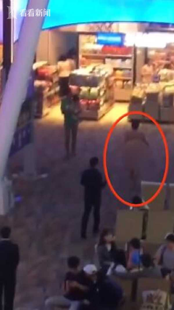 壮阳药吃多致精神失常 男子裸闹泰国普吉机场洋相百出 - 点击图片进入下一页