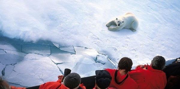 中国游客成俄罗斯北极游主力,每年一班破冰船专为中国人服务