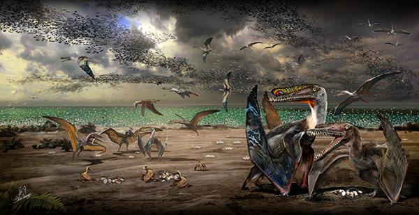 复原的哈密翼龙生态图(绘图者:赵闯)。雄性和雌性哈密翼龙都有头饰,即头骨上方的前上颌骨脊。头饰的差异得以区分雄雌,雄性哈密翼龙的头饰更大、更靠前,为图中彩色花纹的部分。