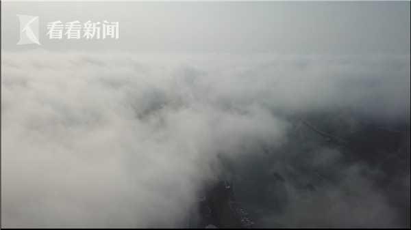 视频|航拍申城大雾!浓雾笼罩 宛若仙境