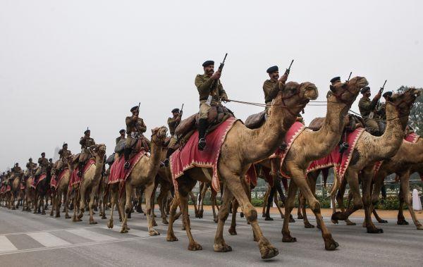 资料图片:2015年1月21日,在印度首都新德里举行的共和日阅兵彩排上,印度边防军士兵骑着骆驼在国王大道上行进。新华社记者 郑焕松 摄