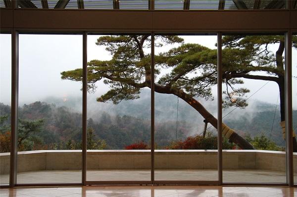 美术馆窗外景致