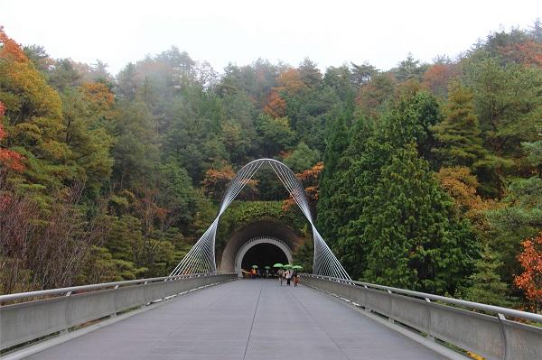 连通隧道与美术馆的斜拉索桥