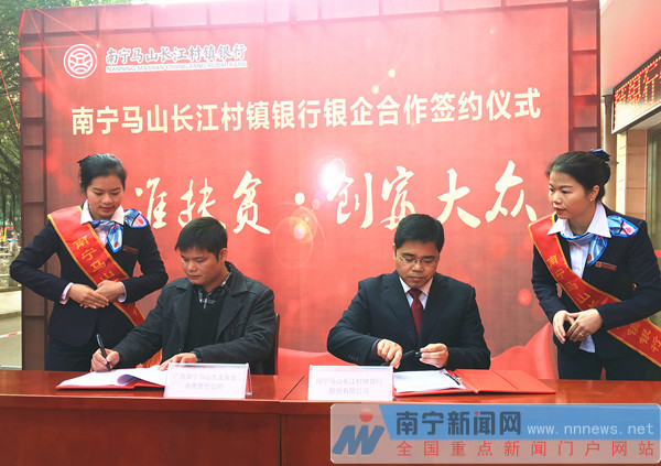 马山长江村镇银行开业 南宁实现村镇银行县域