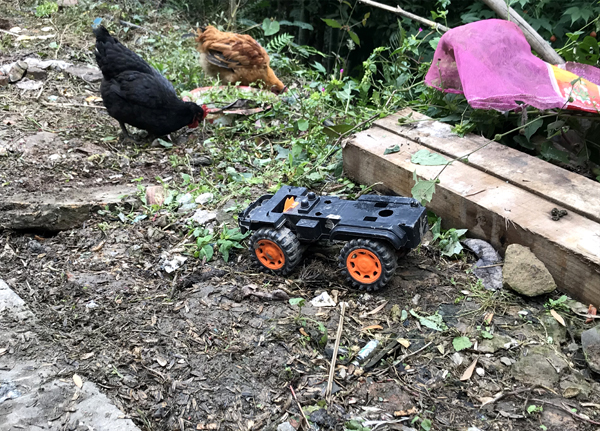 叶巧英孩子留下的玩具。
