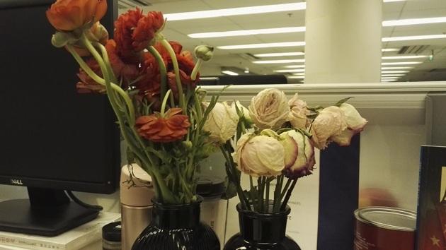 鲜花电商花香背后亦有荆棘:品质不稳定 宣传存陷阱