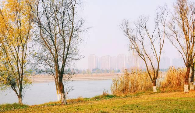 """""""奔跑吧!南京""""首届励志跑今日绿博园开跑"""