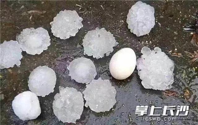 视频丨湖南下起鸡蛋大冰雹!冷空气突袭长沙,气温高台跳水,更悲催的是…