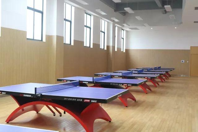 丹枫实验小学乒乓球室图片