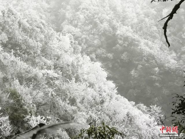 下雪了!下雪了!2017年广东入冬第一场雪来了!