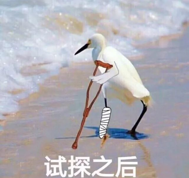 2017年度边缘大赏:小猪佩奇,假笑boy,表情试微信上班表情图片图片