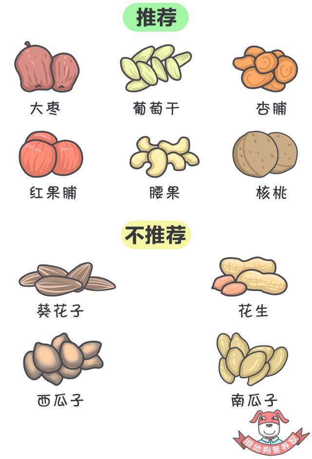 春节计划旅行?这份食品清单你一定用得上!