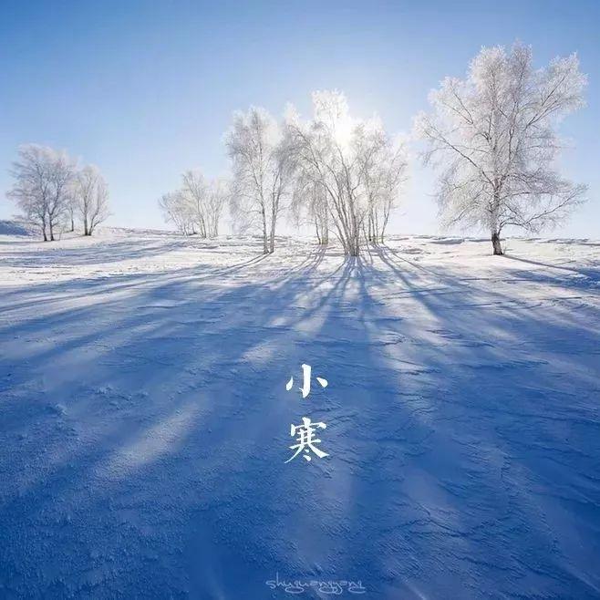 碧泉�9�g_今日小寒   轻舞一曲送冬雪,万家灯里待春风