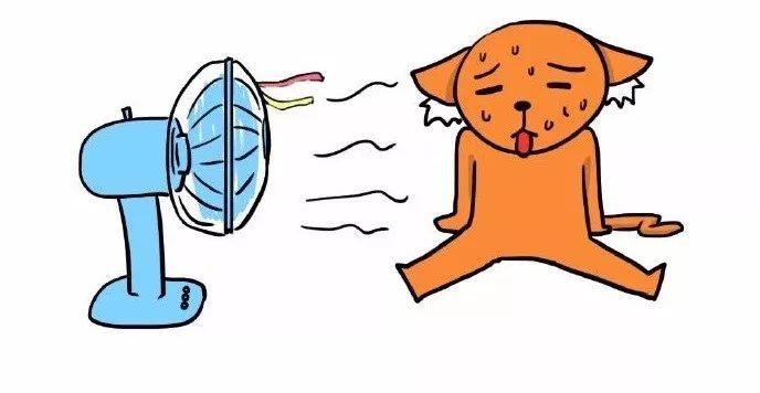 """广东首场冰雹过后,广州将迎""""雨+冷空气"""",气温骤降至……"""