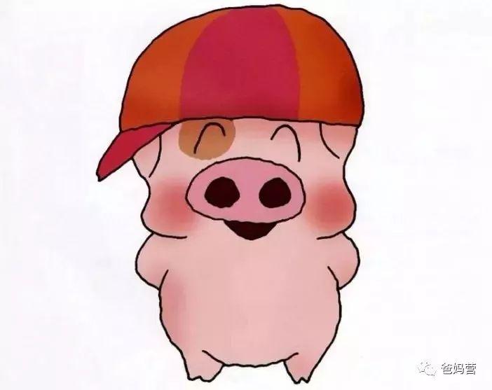 她的走红,也让peppa成了很多猪宝宝的英文名.