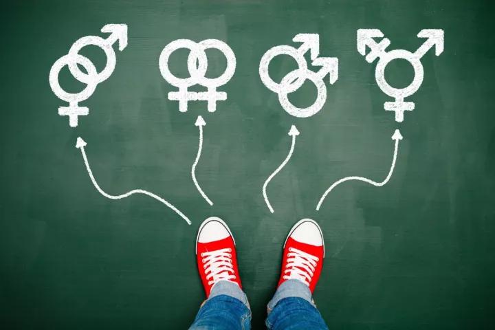 研究或揭示男性性取向的遗传学基础