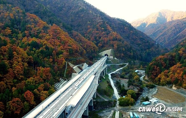 11月2日,一列动车组试验列车驶过秦岭深处的西成高铁新场街站。(唐振江 摄)