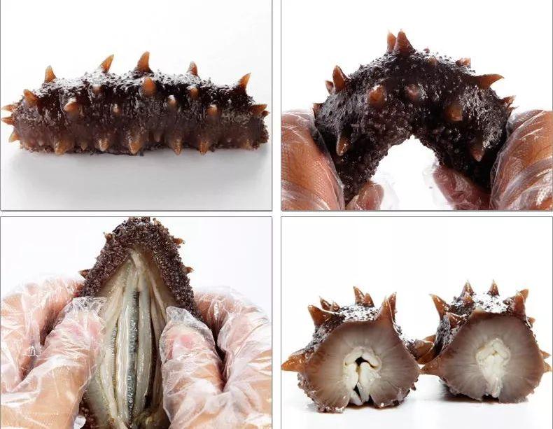 烤羊优选速发特产海参:大连的新明信片内蒙古精品半岛腿图片