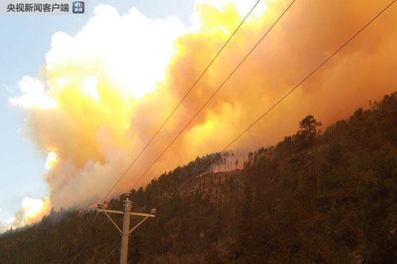 四川省雅江县发生森林火灾 无人员伤亡