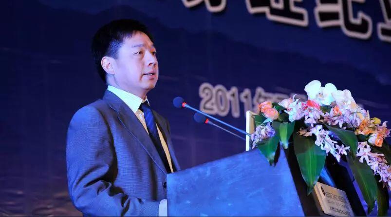 老兵齐亮卸任 汇金李格平将出任新总裁