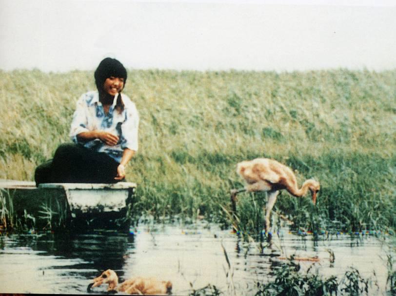 这是徐秀娟与湿地中的鹤(资料照片)。新华社发