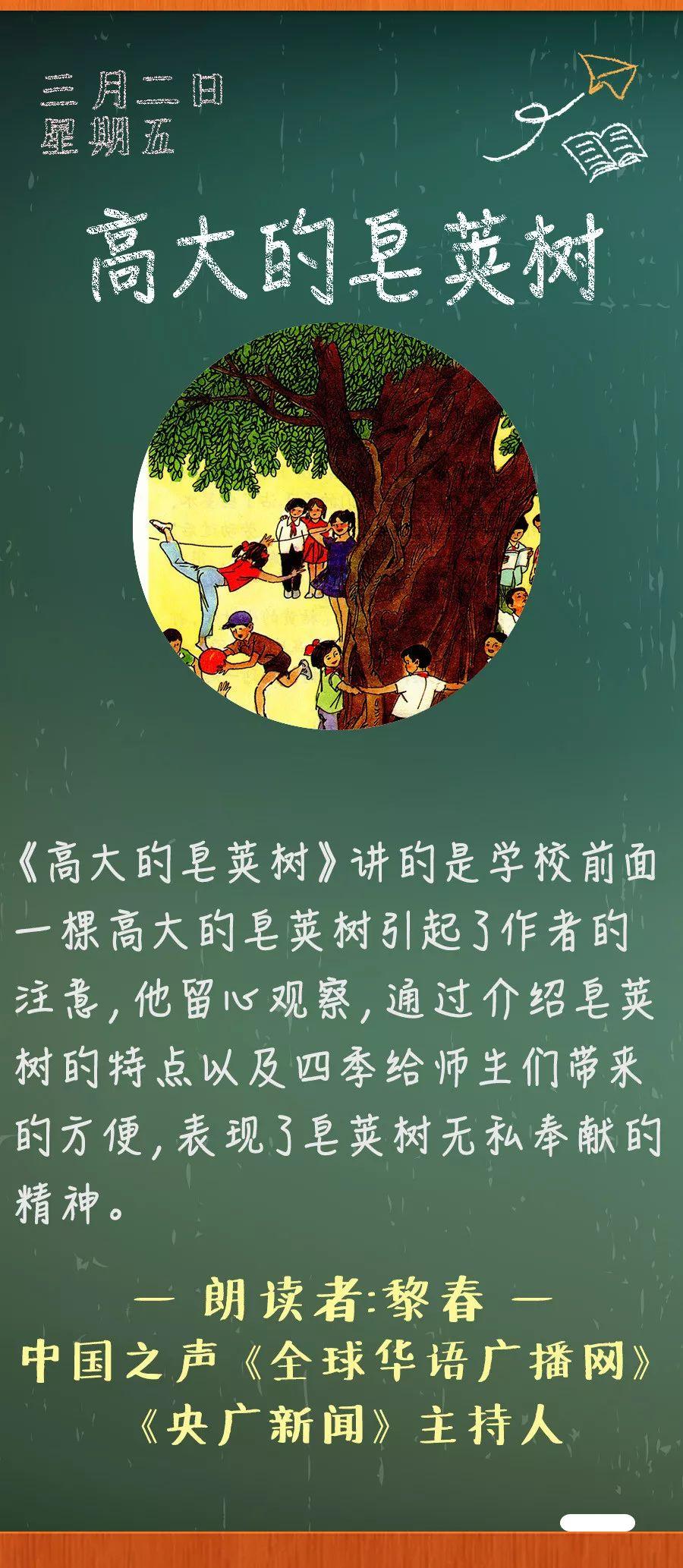 《高大的皂荚树》丨那些年,我们一起读过的课文