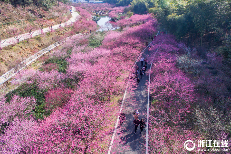 韩国9日起暂停日本公民免签证入境