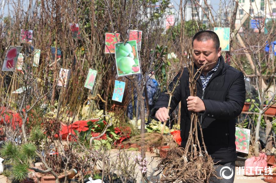 【免费白菜网址】朝鲜粮食困难,韩统一部:暂无粮食援助计划