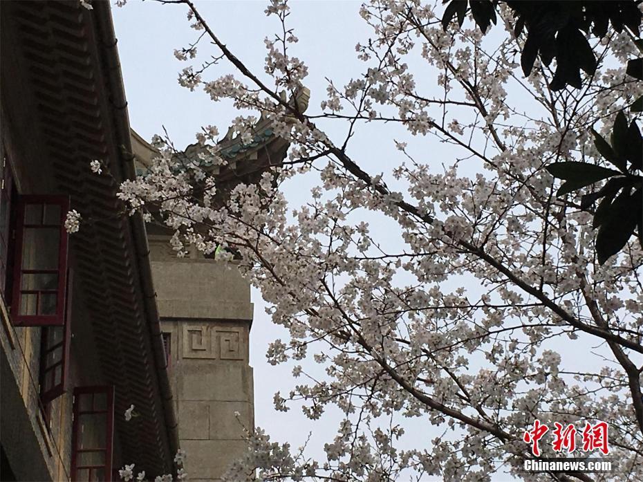 《北京市物业管理条例》5月1日施行