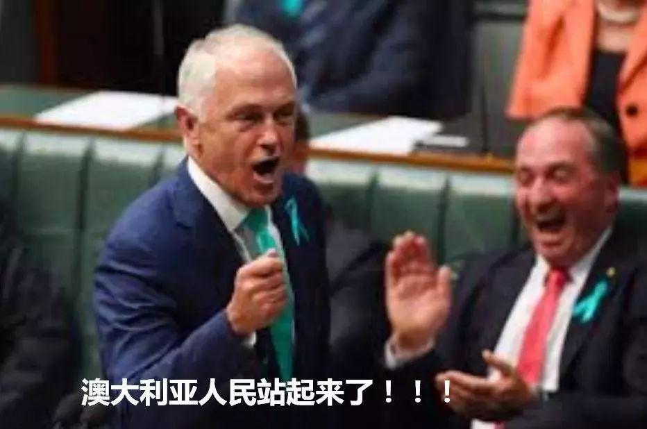 澳总理特恩布尔