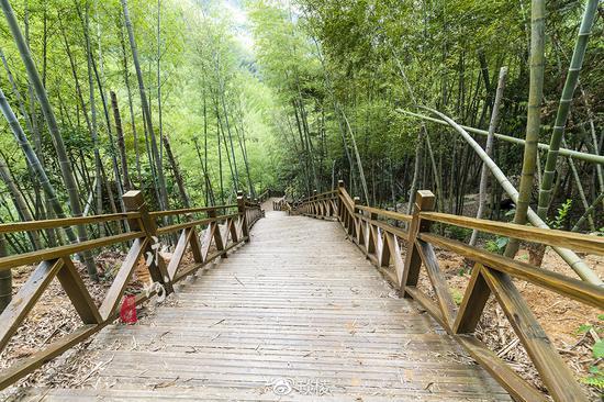山青水秀的永州湘江源国家森林公园