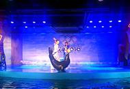 极地动物奥运会 助力中国代表队