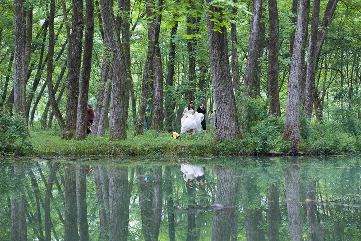 西溪南村   西溪南村,据说因其坐落在溪的南岸,而得此富有诗意的名字。溪水绕村静静的流淌,听着淘菜洗衣的村民谈天说笑,岸边树林茂密,粗壮的大树上绿藤缠绕,牛儿在林里休息溪头饮水,石桥串着明月连着两岸的人家来来往往,仿若绿野仙踪的圣地。(来源:安徽旅游)   地址:黄山市徽州区西溪南镇